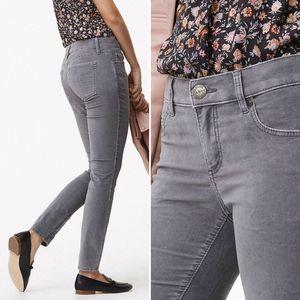 LOFT Petite Modern Skinny Washed Velvet Pants